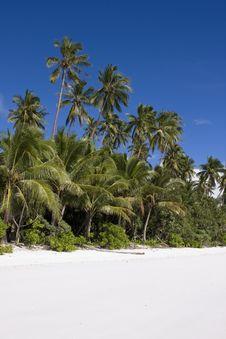 Free White Sand Beach Stock Photo - 9925520