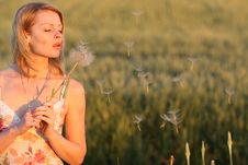 Free Woman And Dandelion Stock Photos - 9926463