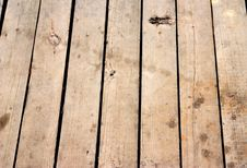 Free Old Wooden Floor Texture Background Stock Photo - 9929650