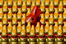 Free Easter, Easter Bunny, Chocolate Royalty Free Stock Photos - 99207388