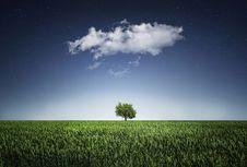 Free Sky, Grassland, Field, Atmosphere Stock Image - 99220061