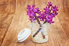 Free Flower, Purple, Lilac, Violet Stock Photo - 99225330