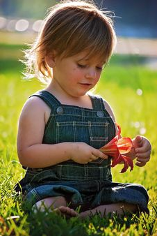 Free Child, Skin, Grass, Sitting Stock Photography - 99230872