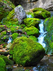 Free Water, Nature, Vegetation, Stream Stock Images - 99271384