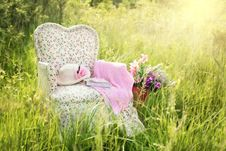 Free Pink, Grass, Meadow, Flower Stock Images - 99281914