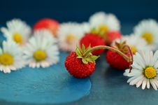 Free Strawberry, Strawberries, Sweetness, Still Life Photography Royalty Free Stock Photography - 99284897