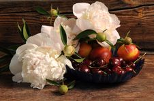 Free Fruit, Still Life, Still Life Photography, Flower Arranging Stock Photography - 99286022