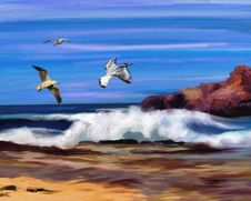 Free Sky, Sea, Seabird, Wave Royalty Free Stock Images - 99286989