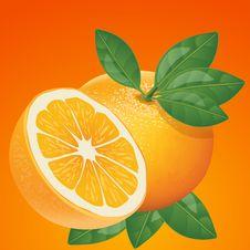 Free Produce, Fruit, Food, Valencia Orange Stock Photo - 99292970