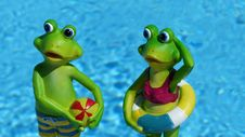 Free Green, Frog, Vertebrate, Amphibian Royalty Free Stock Images - 99293289