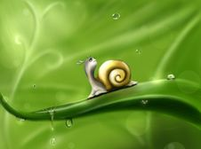 Free Green, Snails And Slugs, Snail, Leaf Royalty Free Stock Images - 99294749