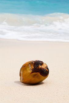Free Shore, Beach, Sand, Sea Royalty Free Stock Photography - 99295647
