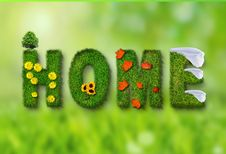 Free Green, Grass, Lawn, Organism Stock Images - 99295944
