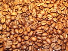Free Jamaican Blue Mountain Coffee, Bean, Commodity, Nuts & Seeds Stock Images - 99295994