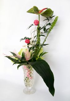 Free Bouquet Stock Image - 9930311