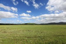 Free Grassland Stock Images - 9930514