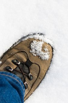 Free First Step In The Snow Stock Photography - 9934372