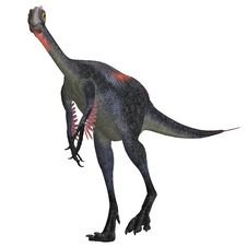 Giant Dinosaur Gigantoraptor Stock Photo