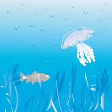 Free Underwater Scene Royalty Free Stock Photo - 9935325