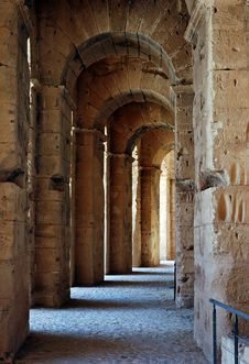 Free Colosseum Passageway Royalty Free Stock Photo - 9936455