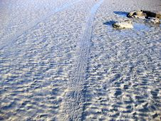 Free Tyre Tracks On The Beach Stock Photography - 9936542