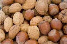 Free Nuts Royalty Free Stock Photo - 9936775
