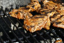Free Grill Stock Images - 9938024