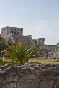 Free Tulum Ruins Stock Photos - 9939053