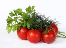 Fresh And Juicy Vegetables Royalty Free Stock Photos