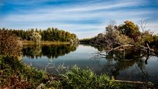 Free Reflection, Water, Nature, Waterway Royalty Free Stock Images - 99360529