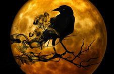 Free Halloween, Moon, Pumpkin, Computer Wallpaper Royalty Free Stock Image - 99367366