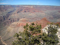 Free The Grand Canyon In Arizona Stock Images - 9949364