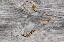 Free The Old Grey Cracked Stump. Stock Photos - 9941423