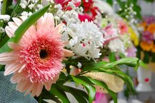 Free Bouquet Royalty Free Stock Photos - 9941768