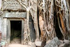 Free Angkor Wat Royalty Free Stock Photography - 9943207