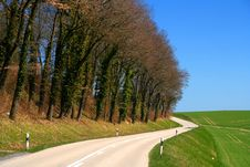 Free Rural Road Royalty Free Stock Images - 9943449