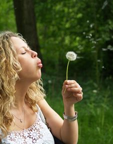Free Curly Girl Blows Dandelion Stock Photos - 9947473