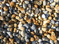 Free Sunlight On Pebbles Royalty Free Stock Image - 9953896