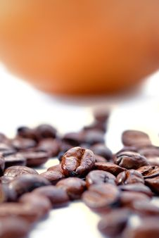 Free Fresh Coffee Bean Series 03 Stock Image - 9950371