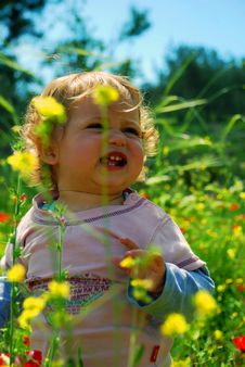 Girl Between Flowers Royalty Free Stock Photography