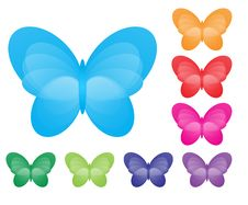 Free Butterflies Royalty Free Stock Photo - 9951955