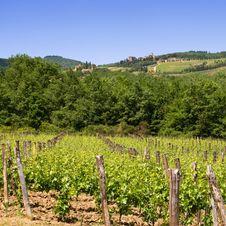 Free Tuscany Stock Photo - 9952330