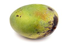 Free Green Uncut Mango Over White Royalty Free Stock Image - 9952856