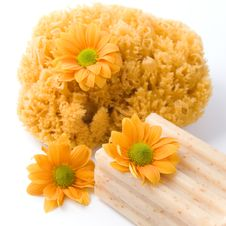 Free Natural Sponge, Soap And Flowers Stock Image - 9952861
