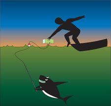 Free Shark Tries To Eat Men Stock Photos - 9956343