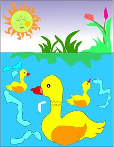 Free Ducks In The Pond Royalty Free Stock Photos - 9956858