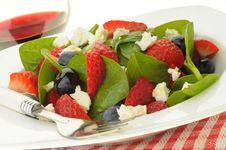 Free Fresh Summer Salad Royalty Free Stock Image - 9956936