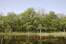 Free Lake. Stock Image - 9959481