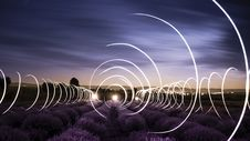 Free Circular Light Trails In A Lavender Field  Stock Photo - 99545730