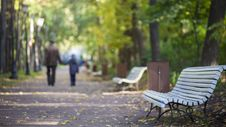 Free Park Benches On Walkway Royalty Free Stock Images - 99545799